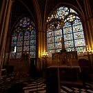 Inside Notre Dam Cathedral by Danielle  Miner