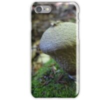 Knobby iPhone Case/Skin