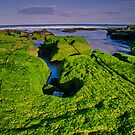 Carpet of Green, Sea and Sky of Blue by bazcelt