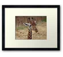 """Girrafe""  by Carter L. Shepard Framed Print"