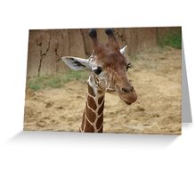 """Girrafe""  by Carter L. Shepard Greeting Card"