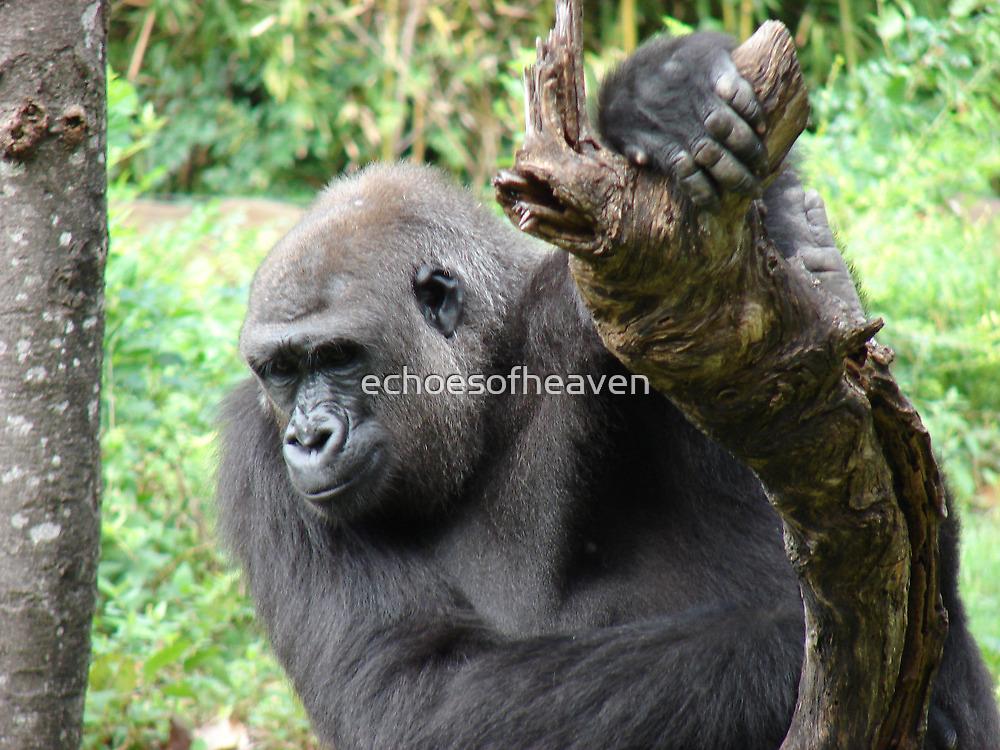 """""""Gorilla""""  by Carter L. Shepard by echoesofheaven"""