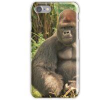 America aaa4 iPhone Case/Skin