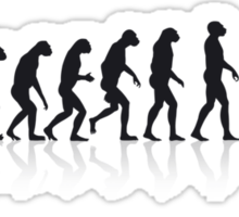 Skate Evolution Sticker