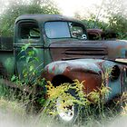 Old Truck by Barbara Ingersoll