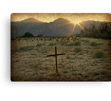 Last Rays of Sunshine Canvas Print
