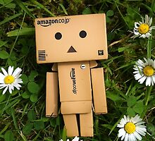 Danbo and daisies, what more could you ask for? by Elinor Barnes