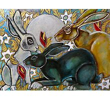 Three Moon Gazing Hares Photographic Print