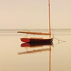 Red Catboat on Misty Waters  by Roupen  Baker