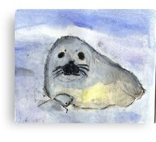 Baby Seal Canvas Print