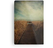 Anywhere You Go Metal Print