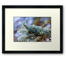 Interesting Plant Life 2 Framed Print