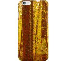 Dappled iPhone Case/Skin