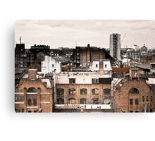 Try a slice of life. Canvas Print