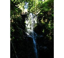 Berry Creek Falls, Big Basin Redwoods State Park, CA 2012 Photographic Print