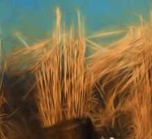 Dried Grass Painting Sticker