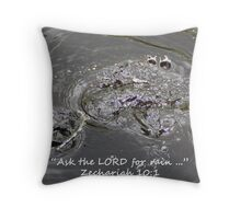"""Zechariah 10:1""  by Carter L. Shepard Throw Pillow"