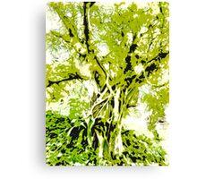 Vibrant Growth  Canvas Print
