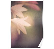 Tinkerbell is hiding Poster