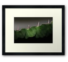 green shadows Framed Print