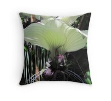 Exotic 'Batwing Plant' Botanic Gdns. tropical 'Cairns'. Que. Throw Pillow