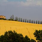 Toscana Italy by RAN Yaari
