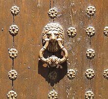 TOLEDO Door 8 by exvista
