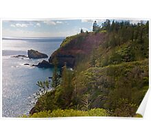 Norfolk Island Poster
