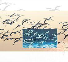 Vital Birds IX by tomcieplinski