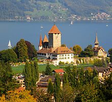 Spiez on Thun lake - Swiss by RAN Yaari