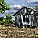 Ruins by Carla Jensen