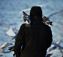 Bird Feeder by Harry Wakefield
