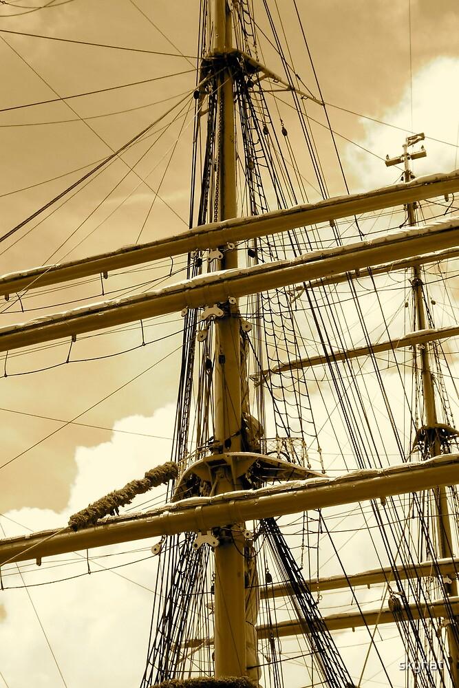Barque Eagle Mast by skyhat
