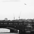 Bridge by Harry Wakefield