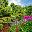 Claude Monet's garden at Giverny, France. by Aleksandar Topalovic