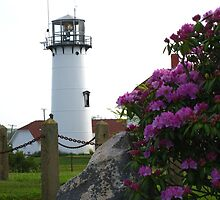 Chatham Lighthouse with Rhododendrons.  by Deborah McLain