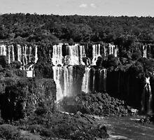 Iguazu by Harry Wakefield