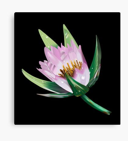 American Lotus Flower-Vector Canvas Print