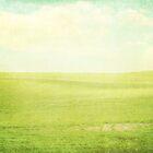 Prairie Summer by cmcdonald