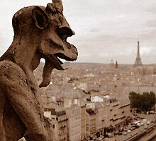 Notre Dame Gargoyle by artyamie