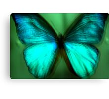 Butterfly Sample Canvas Print