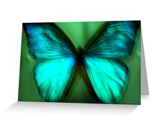Butterfly Sample Greeting Card