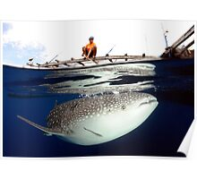 The Whalesharks of Indonesia Poster