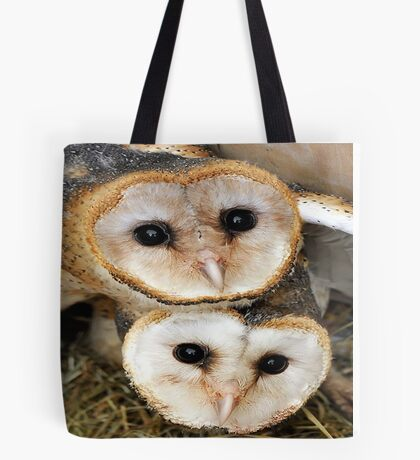 Cute baby barn owls  Tote Bag