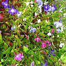Cottage Garden iPhone Case by Fara