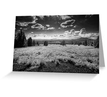 To Flagstaff Greeting Card