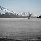 Steam On: Wakatipu by anorth7