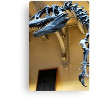 Allosaurus Canvas Print