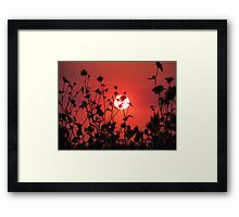 Pleasant Dreams~ Framed Print