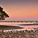 Brighton Park Pano Brisbane Australia by PhotoJoJo